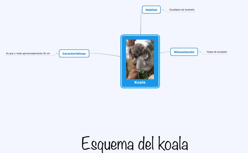 Esquema Koala